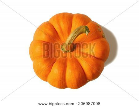 Top view of vibrant orange color ripe pumpkin with stem isolated on white background