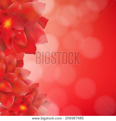 Red Flowers Border With Bokeh