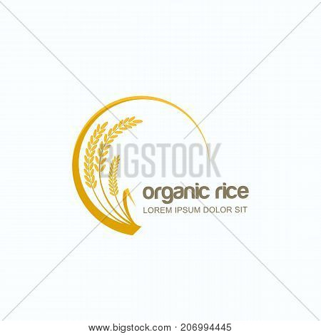 Vector Logo, Label Or Emblem With Rice, Wheat, Rye Grains. Design Template For Asian Agriculture, Ce