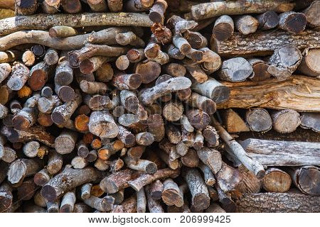 Firewood stack ready for the winter season.