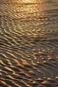 Sunlit sand tracks caused when the tide went out poster
