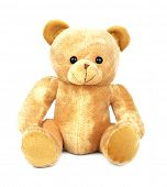 Teddy isolated on white background. Front view poster