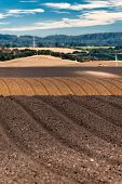 Rolling plowed fields in the Salinas Valley of California poster