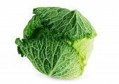Cabbage isolated on a white background Green, White, Isolated, Ripe, Cabbage, background, Color, Object, Vibrant, Close-up, Bright, Single, Studio, Human, poster