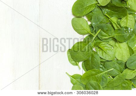 Fresh Green Spinach Leaves On White Wooden Rustic Background Top View Copy Space. Baby Young Spinach