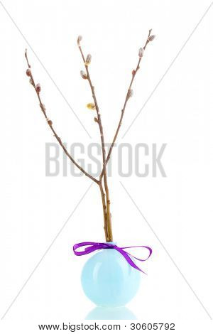 Pussy-willow twig in vase isolated on white