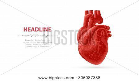 Heart. Abstract 3d Vector Human Heart Isolated On Blue