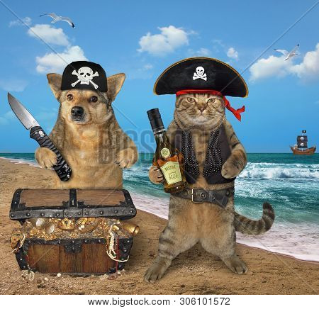 The cat filibuster with a bottle of rum and the dog pirate with a big knife are next to a chest full of treasures on the seashore. poster