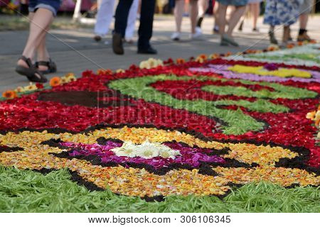Spycimierz / Poland - May 31 2018: Colorful Petal Carpet In Street Hand Made By Local People Traditi