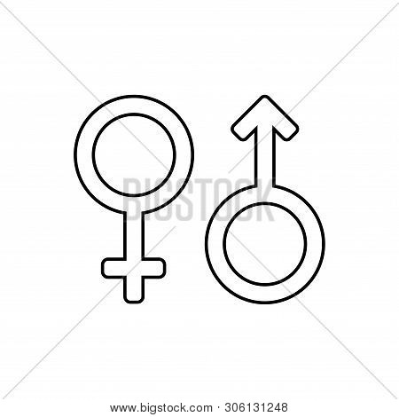 Male And Female Icon Isolated On White Background From Activist Collection. Male And  Female Icon Tr