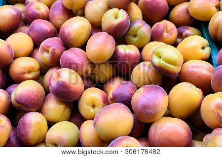 Group Of Ripe Apricots On A Heap