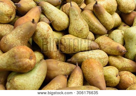 Group Of Fresh Pears On A Heap