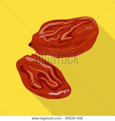 Isolated Object Of Raisin And Dry  Icon. Collection Of Raisin And Heap  Stock Vector Illustration.