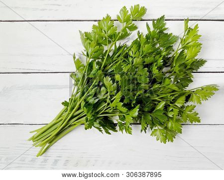 Parsley Bunch On Wooden Table Background. Fresh Raw Parsley Plant Top View. Organic Italian Parsley