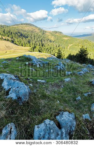 Evening Scenery Of Apuseni National Park. Mountain Landscape With Spruce Forest On Grassy Hills With