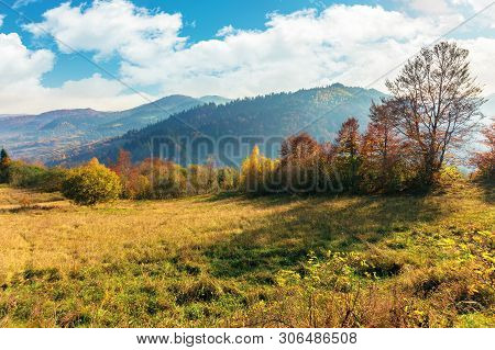 Sunny Autumn Morning In Countryside. Fog In The Distant Valley. Trees In Fall Foliage On The Hillsid