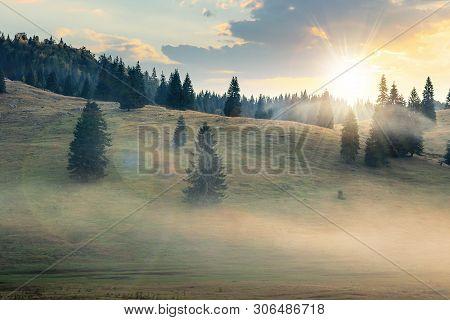 Foggy Sunrise In Romania Countryside. Spruce Trees On Hills. Beautiful Mountain Scenery In Autumn