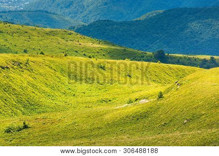 Beautiful Scenery Of Runa Mountain, Ukraine. Green Landscape On A Bright Forenoon. Ridge In The Dist