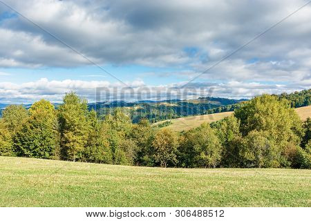 Forest On The Edge Of A Meadow In Mountains. Beautiful Scenery Of Carpathian Mountains In Early Autu