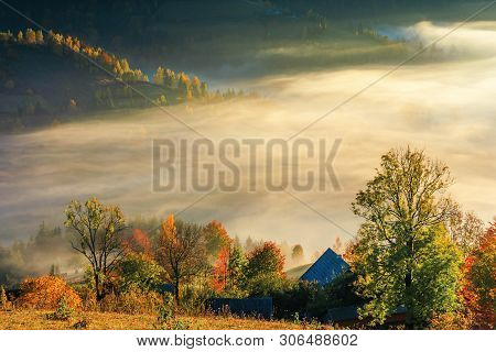 Glowing Fog At Sunrise In Mountains. Wonderful Countryside Autumn Scenery. Mixed Forest On Near The