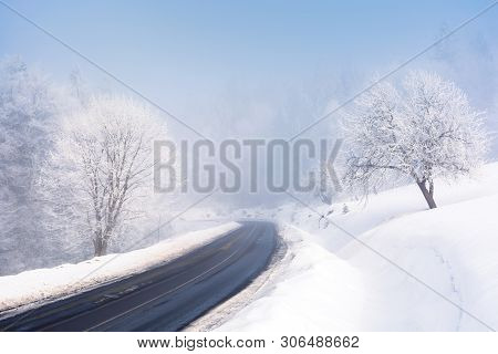 Road Through Forest In Winter. Amazing Foggy Weather. Trees In Hoarfrost. Roadside Covered With High