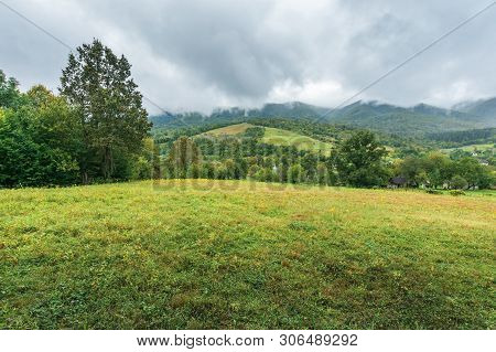 Countryside In Mountains On An Overcast Day.  Grassy Meadow Or Pasture In The Outskirts Of Village.