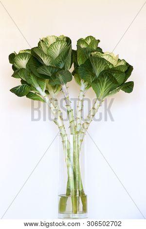 A Glass Vase Of Ornamental Kale Leaves.