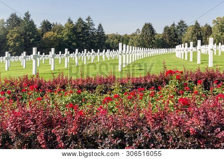 Hamm Near Luxembourg City, Luxembourg - August 22, 2018: American Ww2 Cemetery With Rose Bush And He