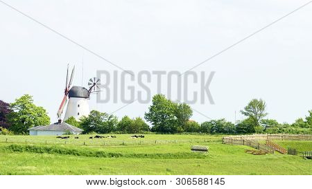 Windmill And Barn In Green Fields Of Dybbol Molle In Sonderborg Denmark Horizontal Panoramic