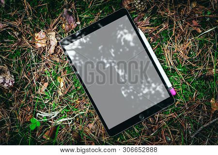 Digital Tablet Computer With Blank Screen And Drawing Stylus Pen In A Mossy Forest. Mobile Device Mo