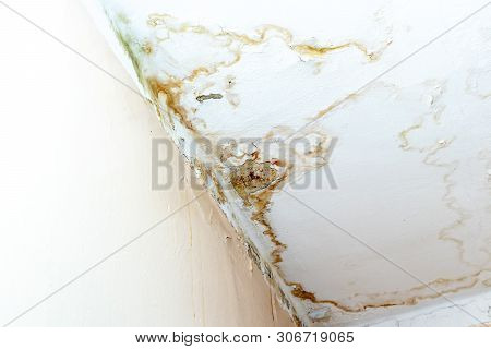 Rain Water Leaks On The Ceiling Because Of Damaged Roof Causing Decay, Peeling Paint And Moldy