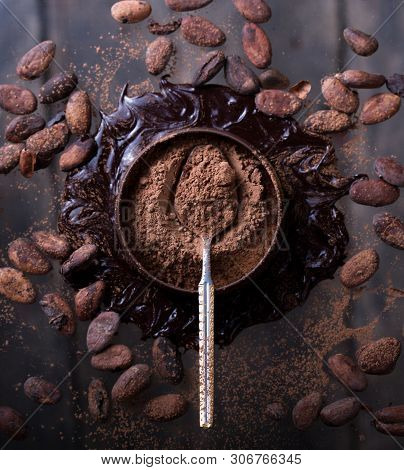 Cacao Beans, Powder, Cacao Butter And Chocolate Bar On Dark Background. Top View