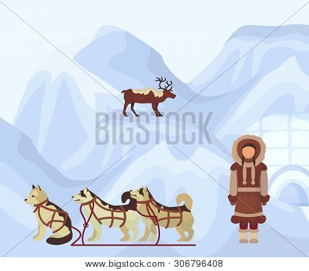 North People In Traditional Eskimos Costume, Arctic Dogs And Polar Deer. Life In The Far North. Pola