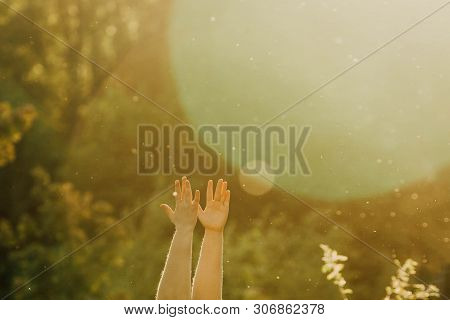 Female Hands Doing Yoga In Nature On A Sunny Summer Day. Body Positive, Sports For Women, Harmony, A