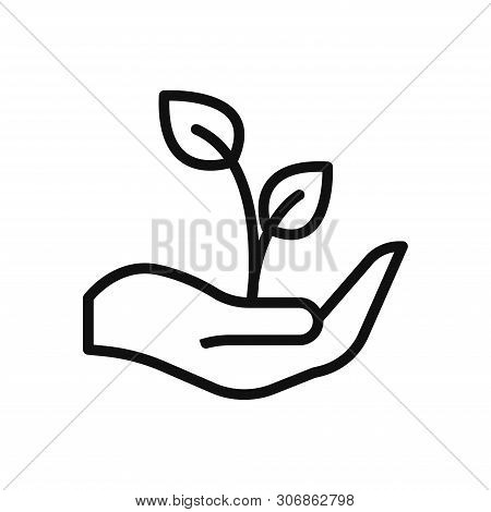 Growth Icon Isolated On White Background. Growth Icon In Trendy Design Style. Growth Vector Icon Mod