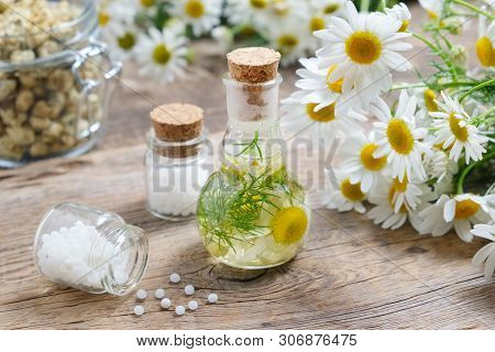 Daisy Infusion Bottle, Chamomile Flowers, Bottles Of Homeopathic Globules And Glass Jar Of Dry Daisi