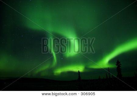 Aurora All Over The Sky