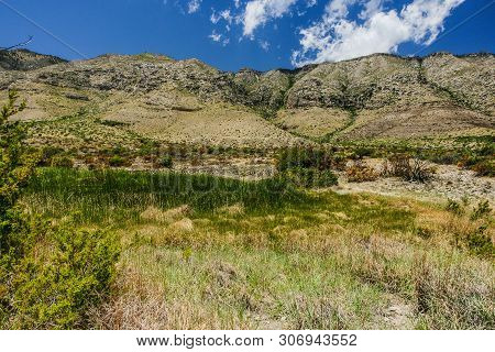 Manzanita Spring Trail In Guadalupe Mountains National Park In Texas, United States