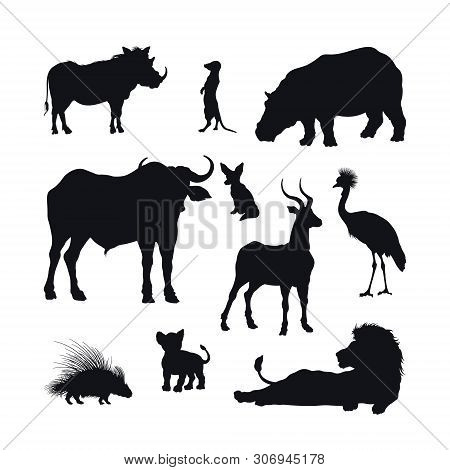 Black Silhouette Of African Animals On White Background. Isolated Icon Of Lion, Buffalo And Gazelle.