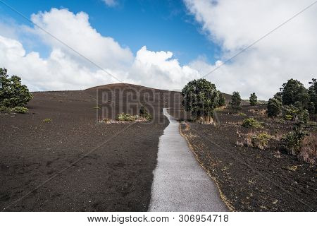 Devastation Trail In Hawaii Volcanoes National Park In Hawaii, United States