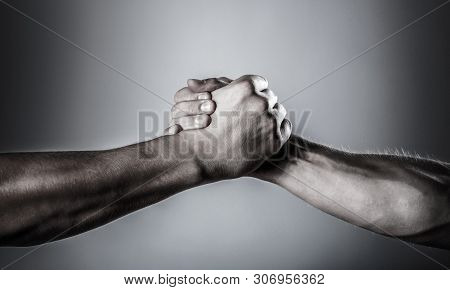 poster of Handshake, arms. Friendly handshake, friends greeting. Rescue, helping hand. Male hand united in handshake. Man help hands, guardianship, protection. Two hands, isolated arm, helping hand of a frien