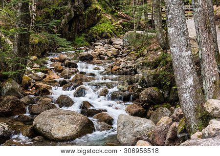 Flume Brook, Flume Gorge, Franconia Notch State Park, New Hampshire, United States