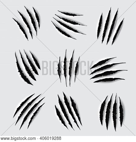 Scratches And Claw Marks Of Animal Paws. Vector Torn Traces Of Tiger, Lion, Cat Or Bear Monster, Sla