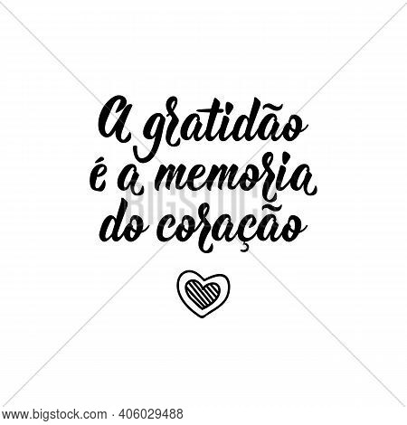 Brazilian Lettering. Translation From Portuguese - Gratitude Is The Memory Of The Heart. Modern Vect
