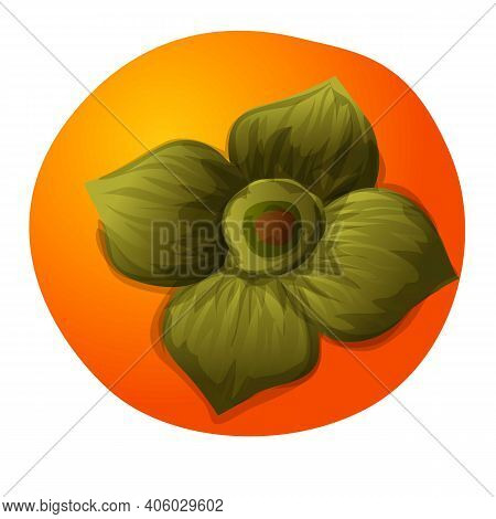 Top View Persimmon Icon. Cartoon Of Top View Persimmon Vector Icon For Web Design Isolated On White