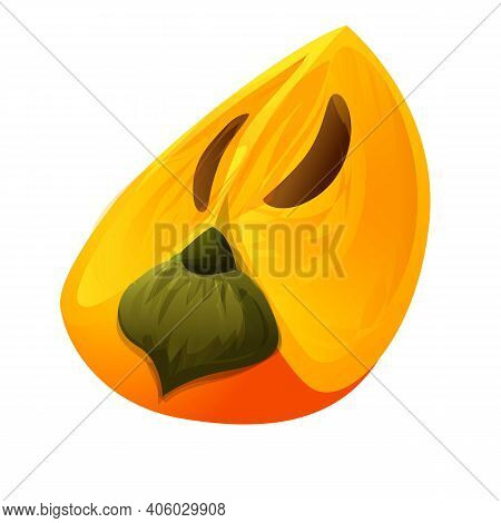 Persimmon Diet Icon. Cartoon Of Persimmon Diet Vector Icon For Web Design Isolated On White Backgrou