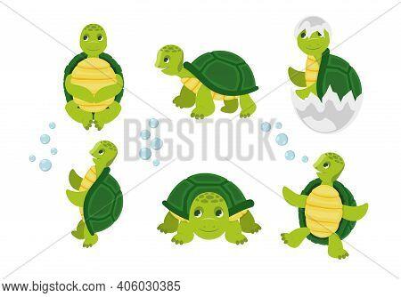 Cartoon Turtles. Happy Funny Animals Running Tortoise Vector Collection. Cartoon Vector Turtle In Va