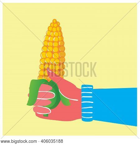 The Vector Illustration Of Hand Holding The Corn Cob In The Flat Style