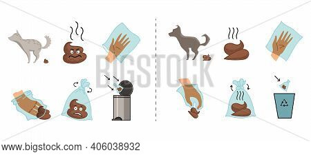 Dog Poo Clean Up Steps Infographic Set. Picking Waste In Canine Bag And Throw In The Trash. Vector P