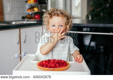Cute Caucasian Baby Boy Eating Ripe Red Fruits At Home. Funny Child Kid Sitting High Chair With Fres